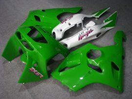 Kawasaki NINJA ZX6R 1994-1997 ABS verkleidung - anderen - Grün/Weiß