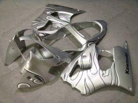 Kawasaki NINJA ZX6R 2000-2002 Injection ABS verkleidung - Schwarz Flame - Silber