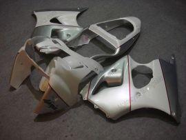 Kawasaki NINJA ZX6R 2000-2002 Injection ABS verkleidung - anderen - Silber/Weiß