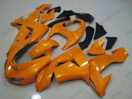 Kawasaki NINJA ZX10R 2006-2007 Injection ABS verkleidung - anderen - alle Orange